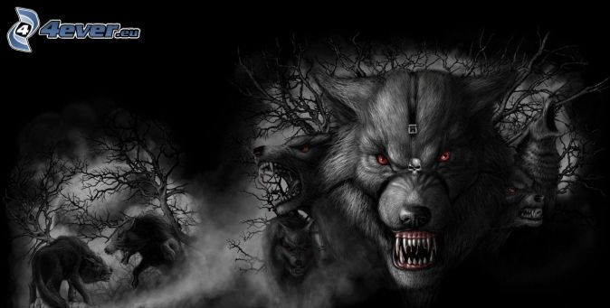 rysunkowe wilki