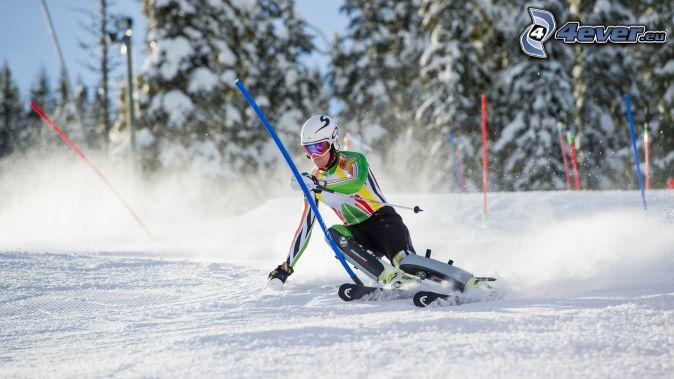 narciarstwo, tyczka
