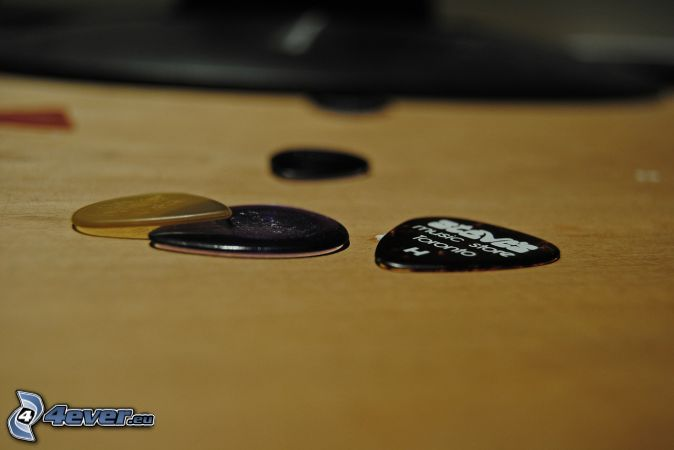 piórko do gitary