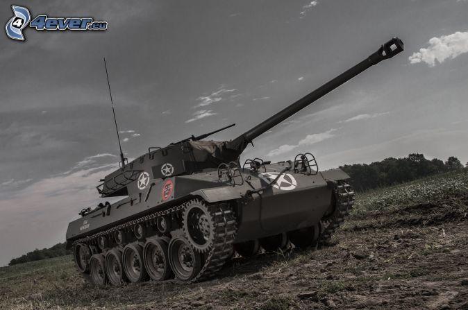 M18 Hellcat, czołg, łąka
