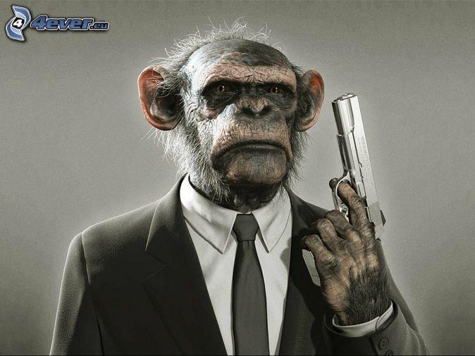 małpa, pistolet, garnitur