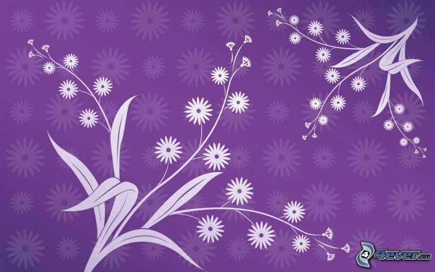 białe kwiaty, fioletowe tło