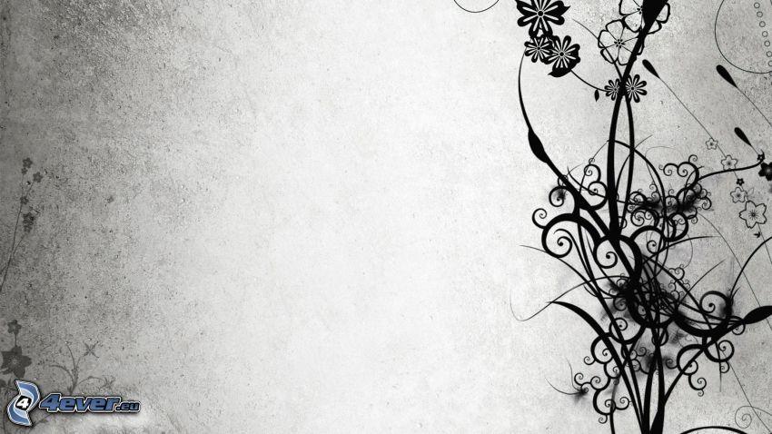 cyfrowe kwiaty, linie