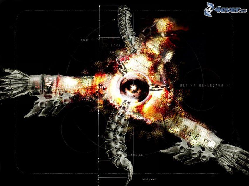 Retina Reflection II, 3D