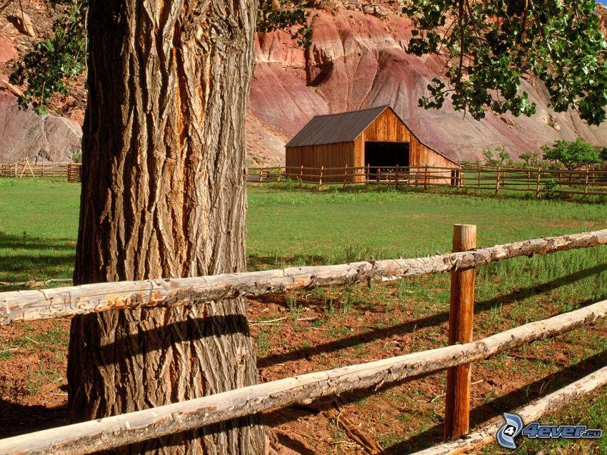 drewniany płot, domek, drzewo, łąka