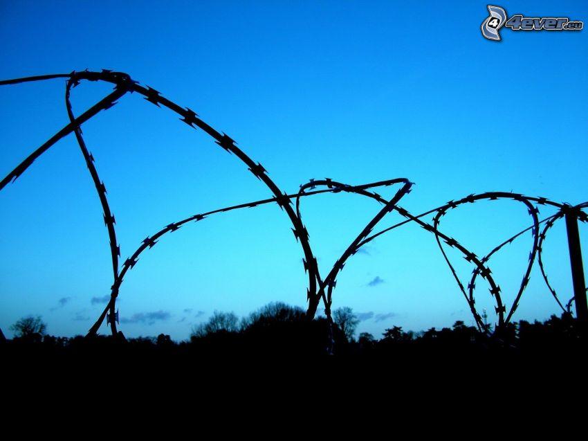 drut kolczasty, ogrodzenie z drutu, niebieskie niebo