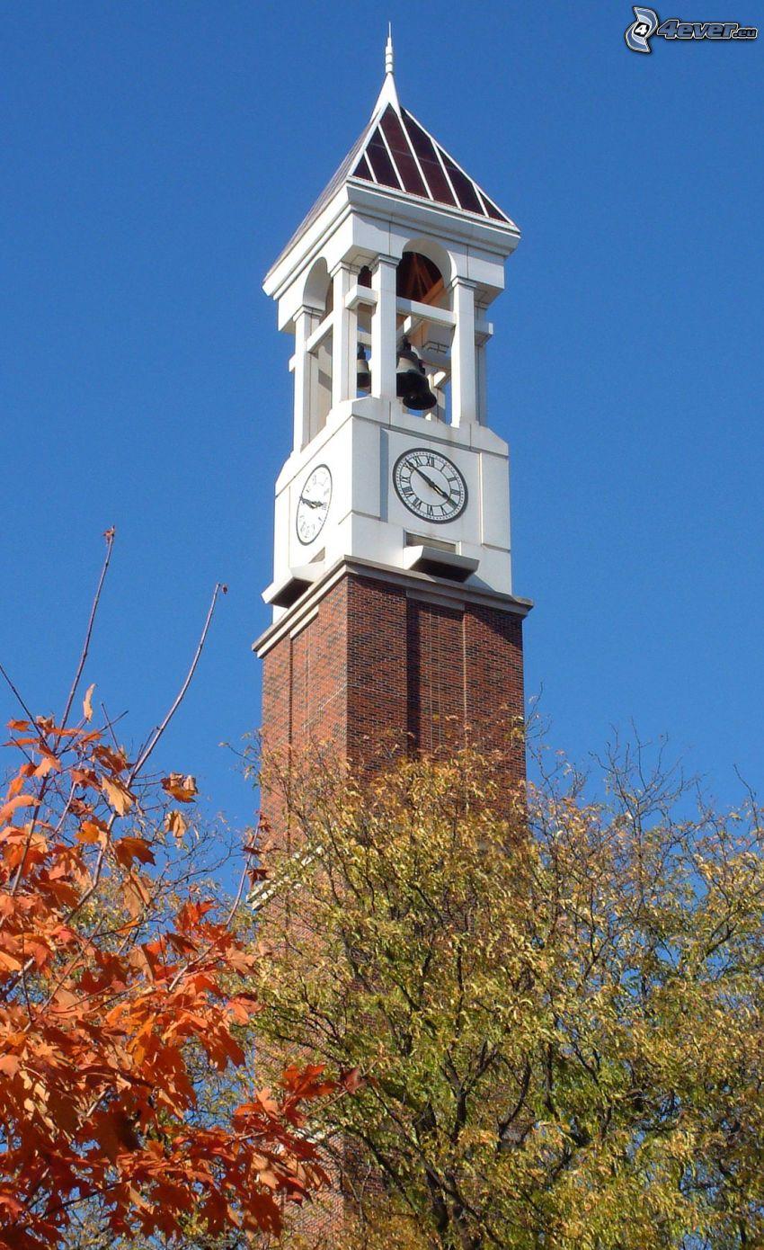 dzwonnica, zegar, jesienne drzewa
