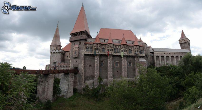 Hunyad, zamek, most, drzewa