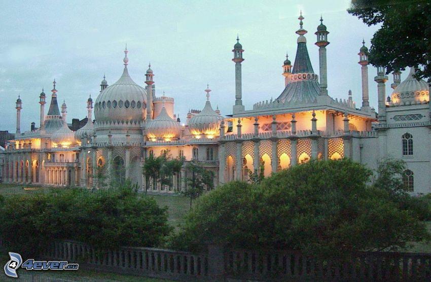 Royal Pavilion, światło, krzewy