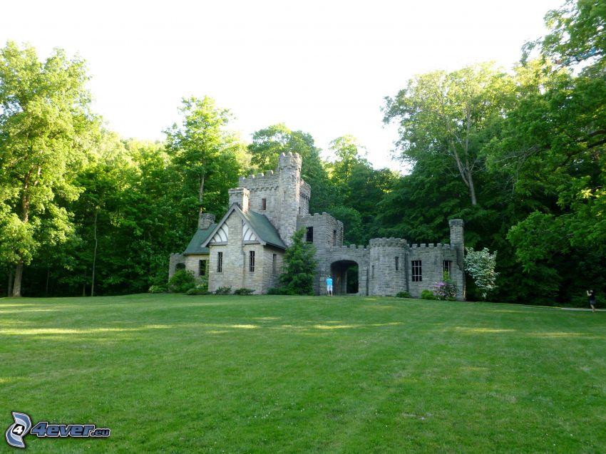 Squire's Castle, las, trawnik
