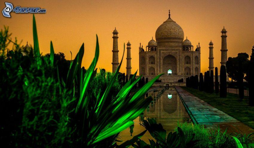 Taj Mahal, woda, krzewy, wieczór