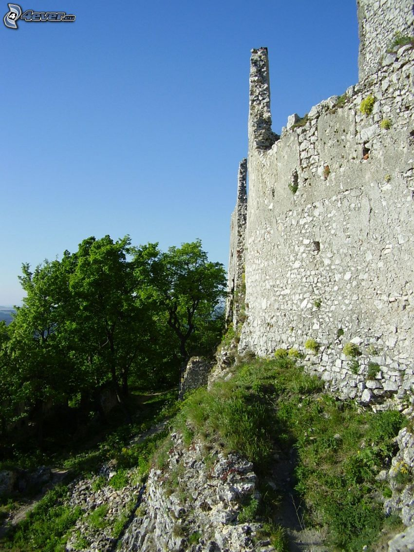 zamek, ruiny