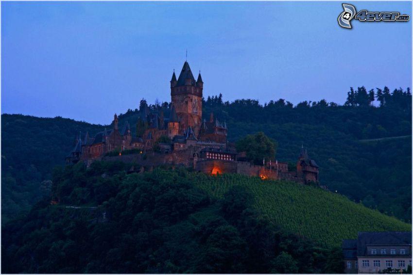 zamek, wzgórze, drzewa