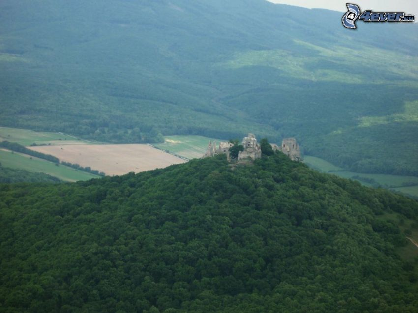 Zamek Gýmeš, las, ruiny, widok z lotu ptaka