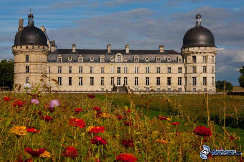 zamek w Valençay, łąka, polne kwiaty