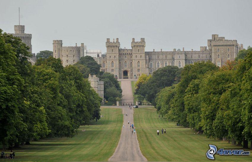 Zamek Windsor, park, chodnik, aleja drzew