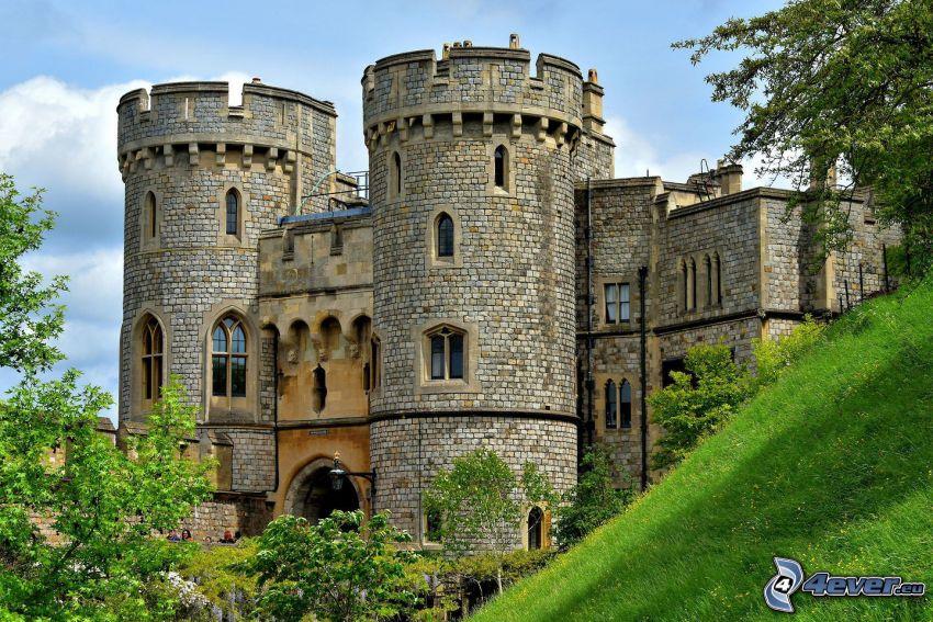 Zamek Windsor, trawa, zielone drzewa