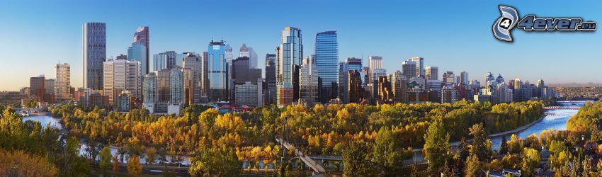 Calgary, panorama, park, drzewa