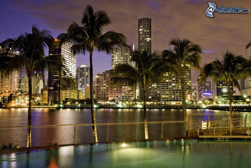 Miami, wieżowce, palmy, miasto nocą
