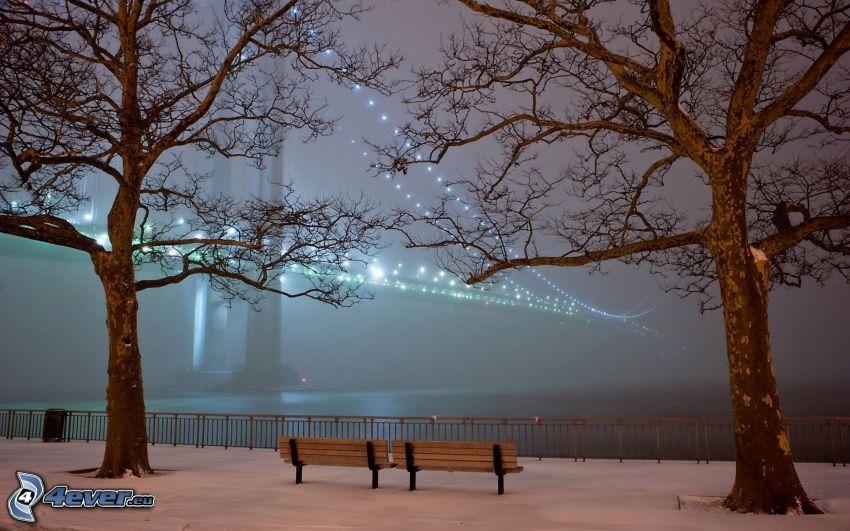 oświetlony most, drzewa, ławki, noc
