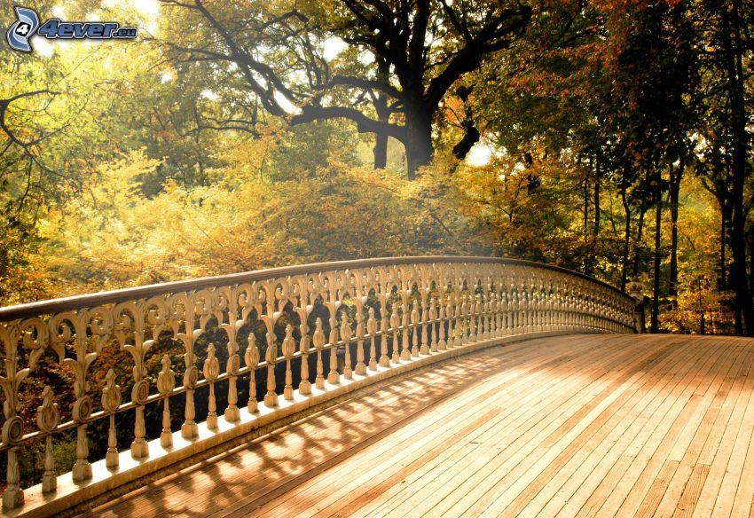 drewniany most, las, drzewa