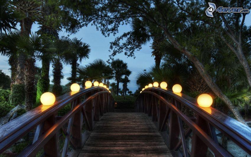 drewniany most, palmy