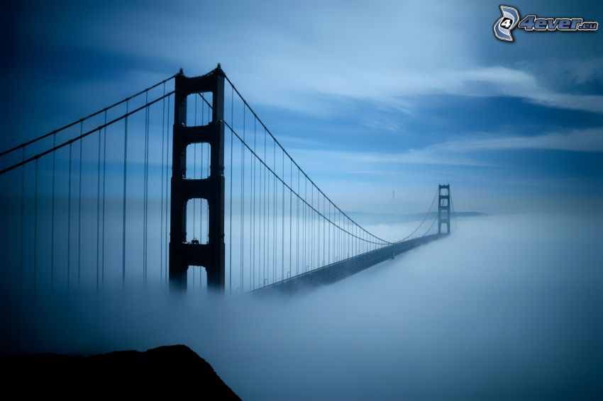 Golden Gate, most we mgle