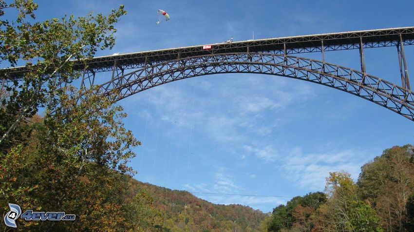 New River Gorge Bridge, drzewa, paralotniarstwo
