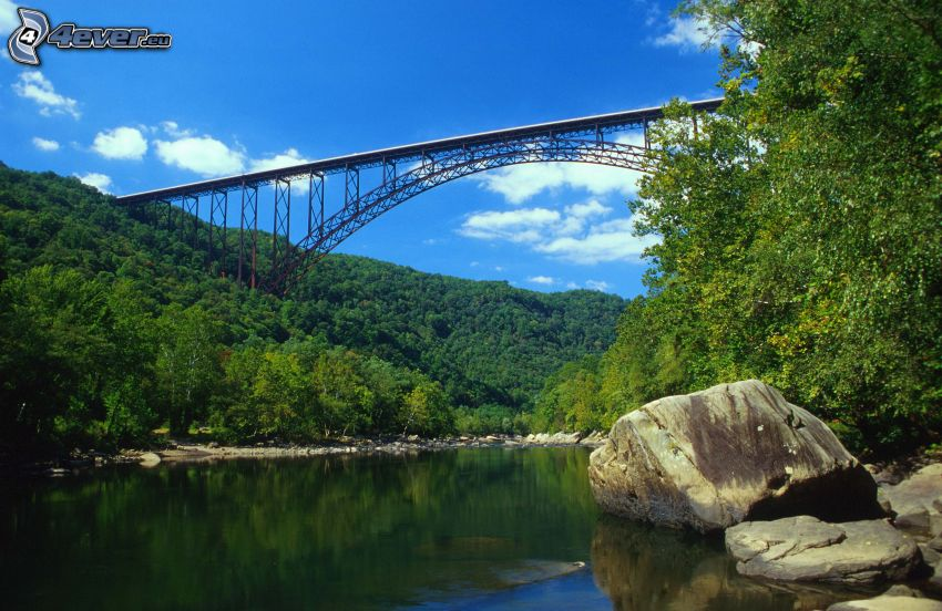 New River Gorge Bridge, rzeka, las, kamienie