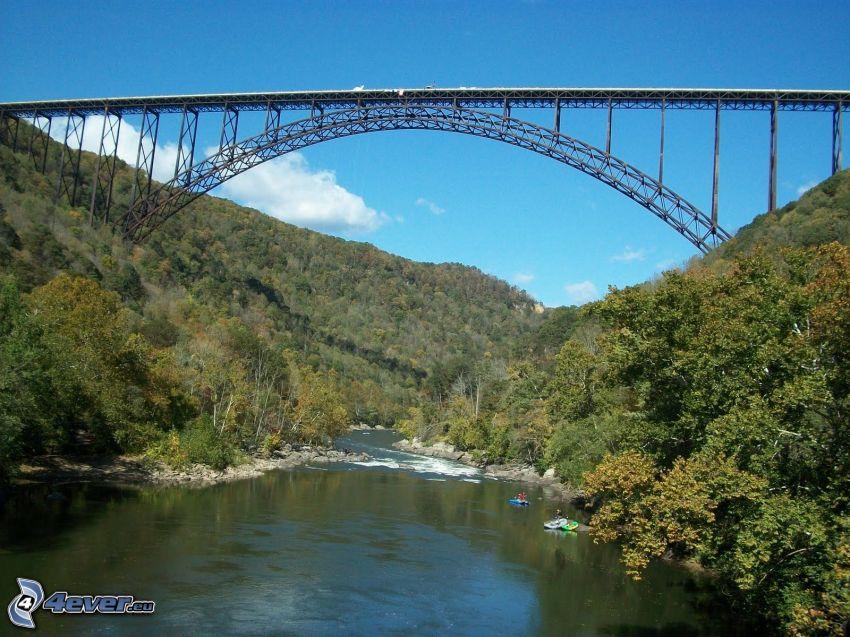 New River Gorge Bridge, rzeka, las