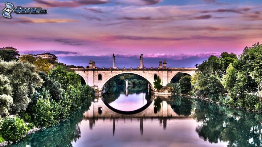 Ponte Flaminio, rzeka, niebo o zmroku, HDR, drzewa
