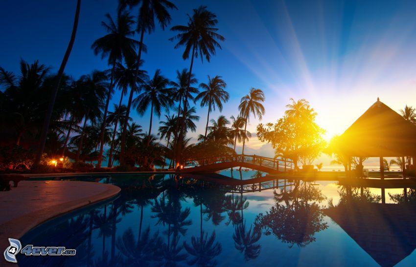 palmy, zachód słońca, basen, drewniany most, altanka, wakacje