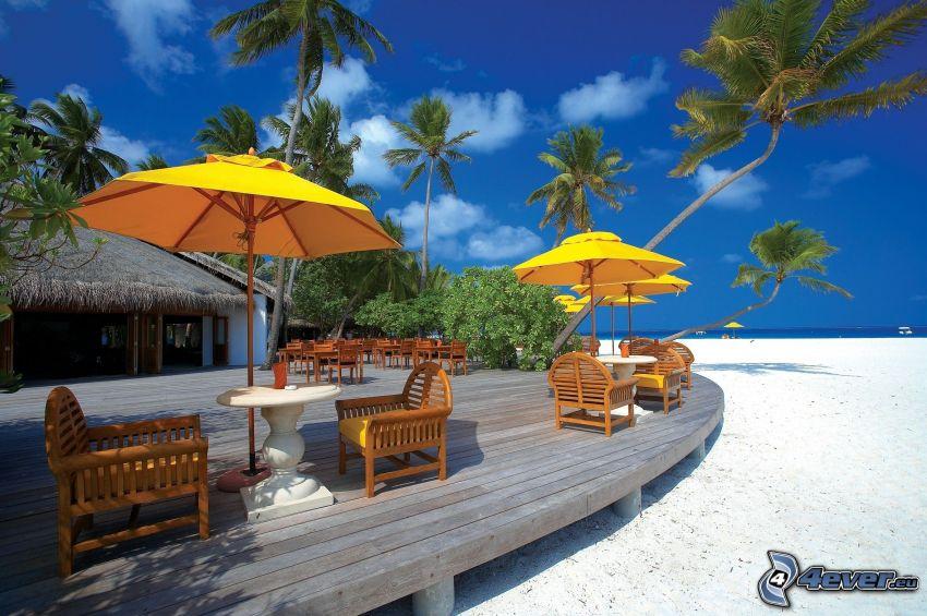 taras, parasole przeciwsłoneczne, plaża, palmy