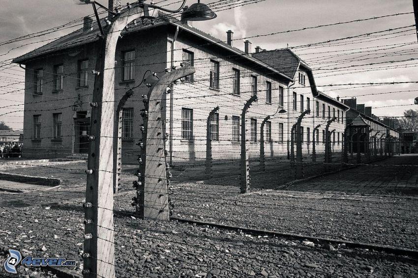 obóz koncentracyjny, ogrodzenie z drutu, Oświęcim, czarno-białe zdjęcie