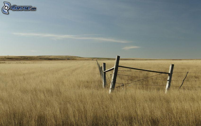 ogrodzenie z drutu, stary płot, pole