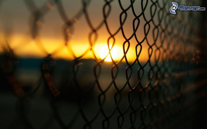 ogrodzenie z drutu, zachód słońca