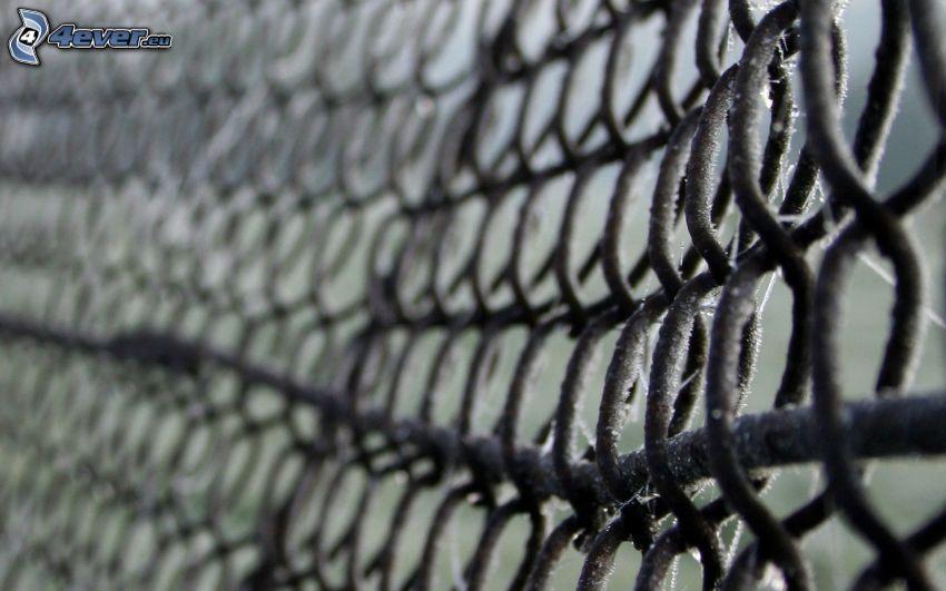 ogrodzenie z drutu
