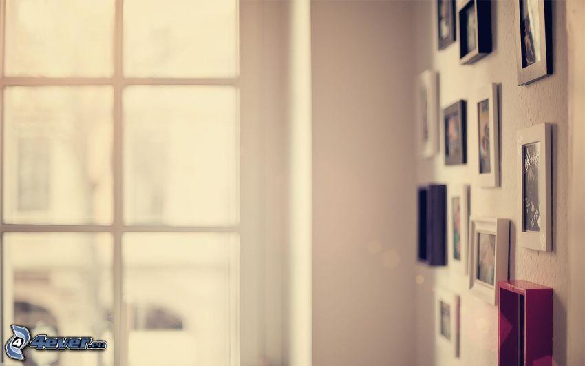 pokój, obrazy, Zdjęcia, okno