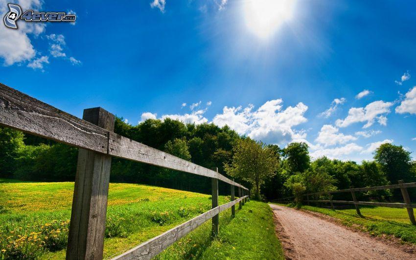 polna droga, drewniany płot, łąka, las, słońce