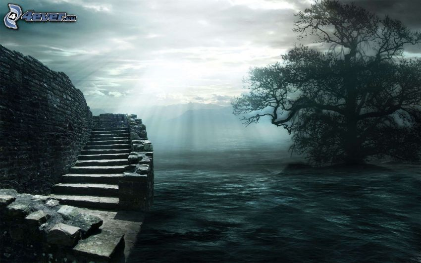 schody, drzewo, promienie słoneczne, morze