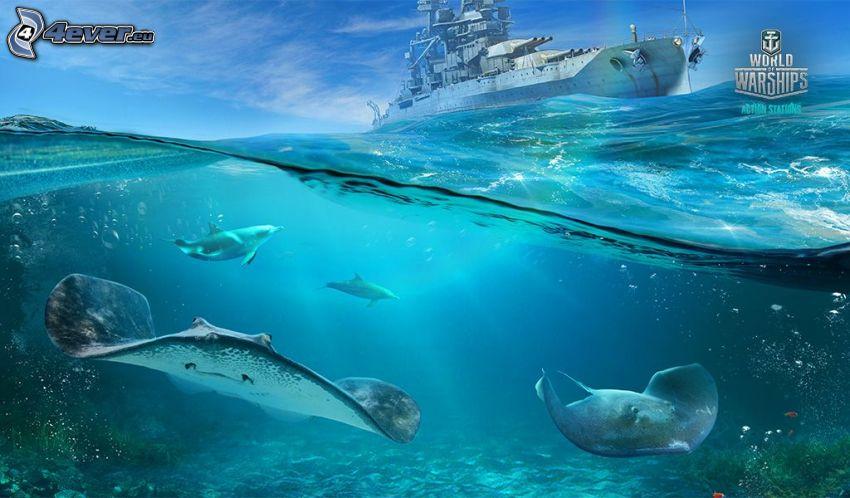 World of Warships, delfiny, płaszczki