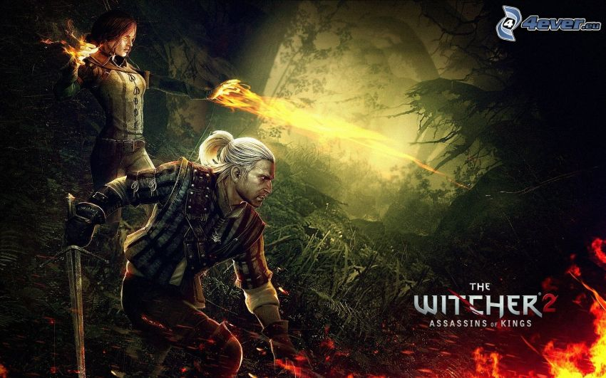 The Witcher 2: Assassins of Kings, wojownicy