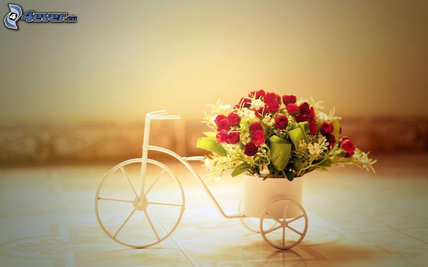 bukiet róż, rower