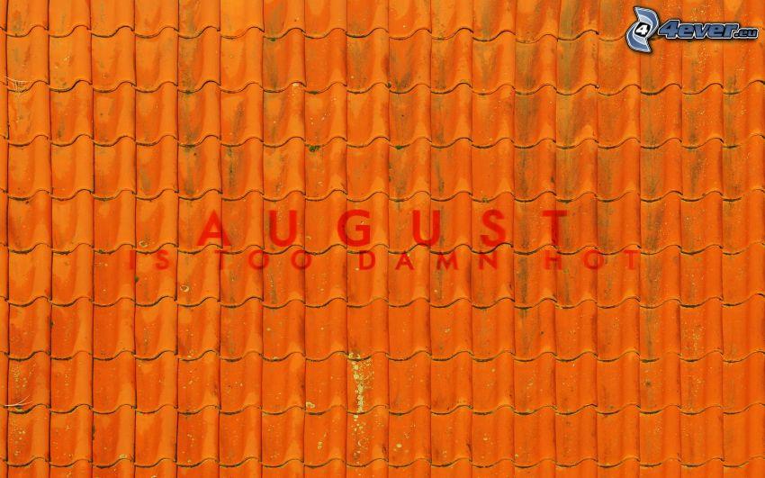dach, August