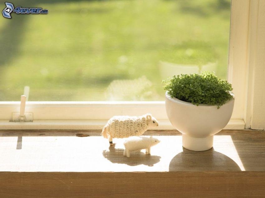 doniczka, zielone liście, owieczka, świnia, okno