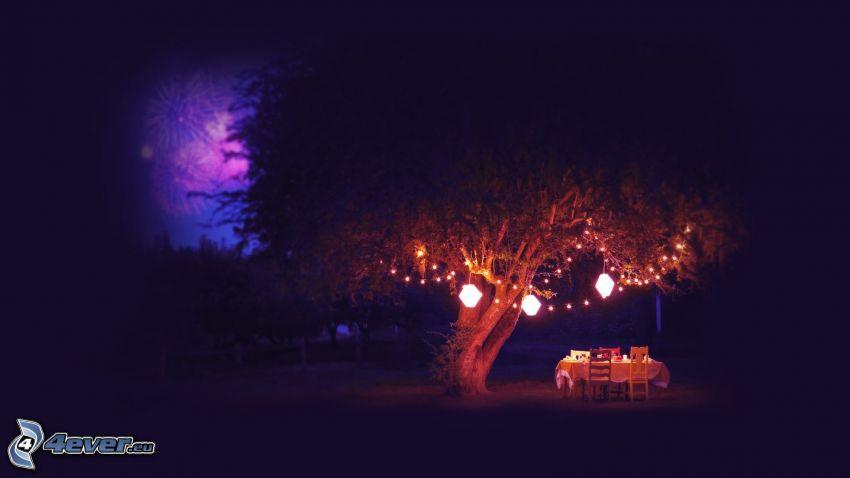 drzewo, siedzenie, światła