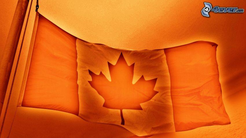 flaga kanadyjska