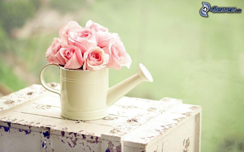 konewka, różowe róże, skrzynka