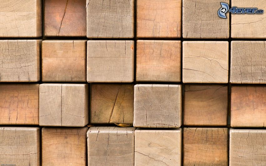 kostki, drewno