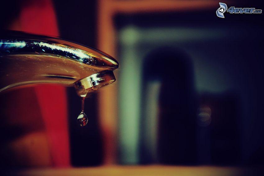 kran, kropla wody
